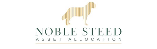 Noble Steed Asset Allocation